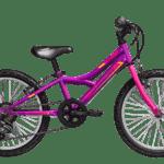Sierra-20-580-Purple